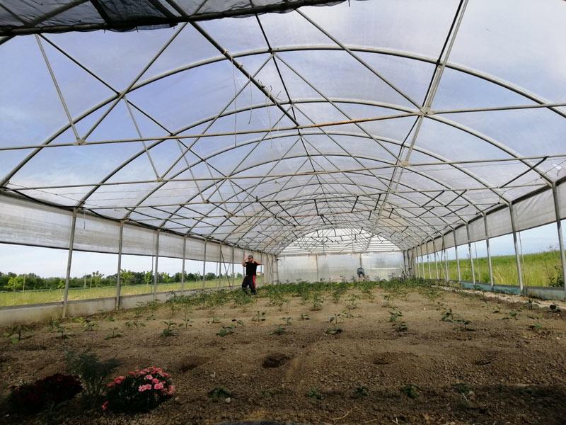 Lago di Pane agricoltura sociale biologica serre